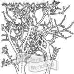Branches Stencil from The Crafters Workshop