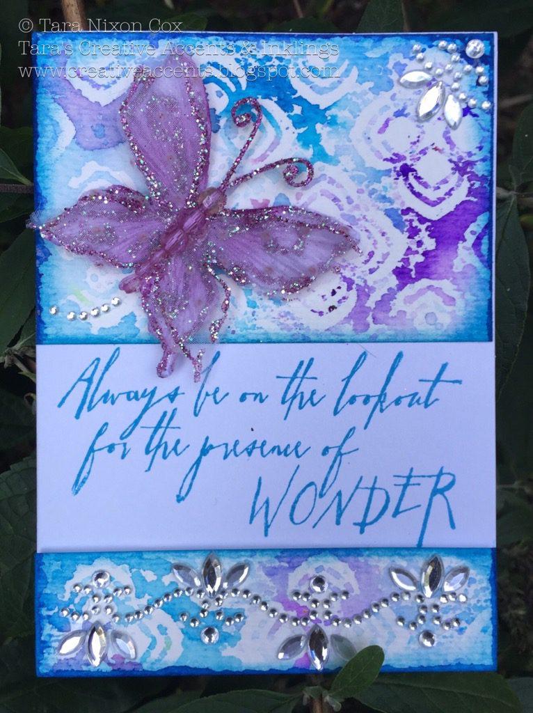 butterfly wonder (1)