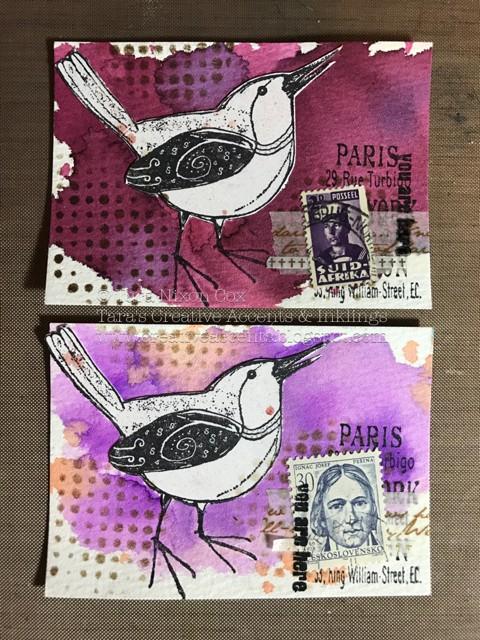birdATCs (2)