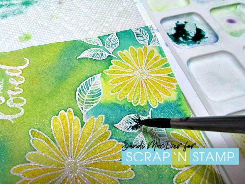 Gina K Elegant Asters Watercoloured