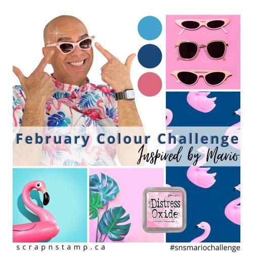 Mario color challenge